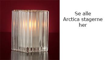menu arctica